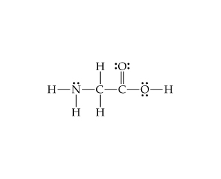 Solved: Consider The Lewis Structure For Glycine, The Simp ...