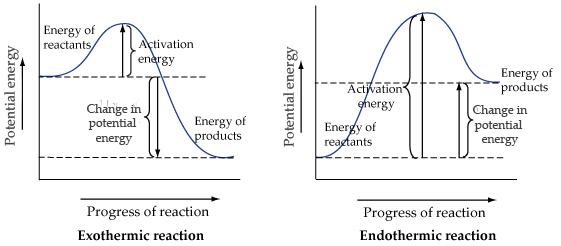 Solved: The Reaction Energy Diagrams For An Endothermic An ...